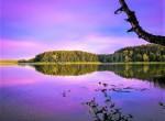 Jezioro -Nowe Bagienice